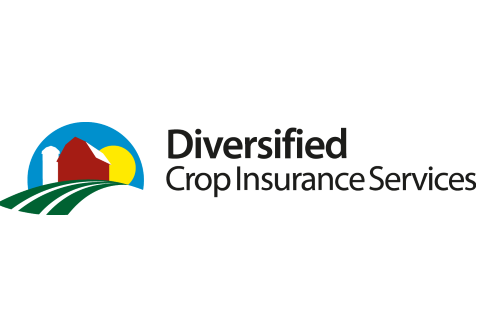 Diversified Services